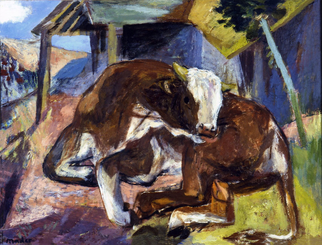 Junger Stier, um 1965/70